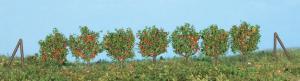 Heki 19135 leifruit